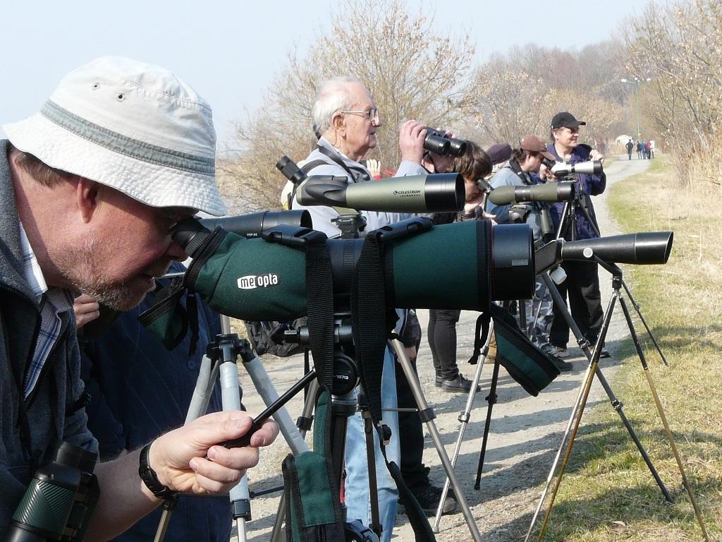První jarní ornitologická exkurze na Hradeckém rybníku v Tovačově
