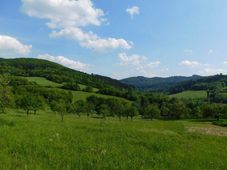 Malebná zemědělská krajina v PO Horní Vsacko. Foto: K. Ševčíková
