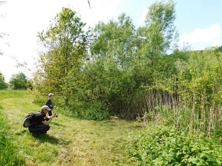 Sledování ptáků u vodní nádrže. Foto:  K. Ševčíková