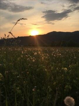 S monitoringem chřástalů polních se čekalo na setmění. Foto: J. Rutterle