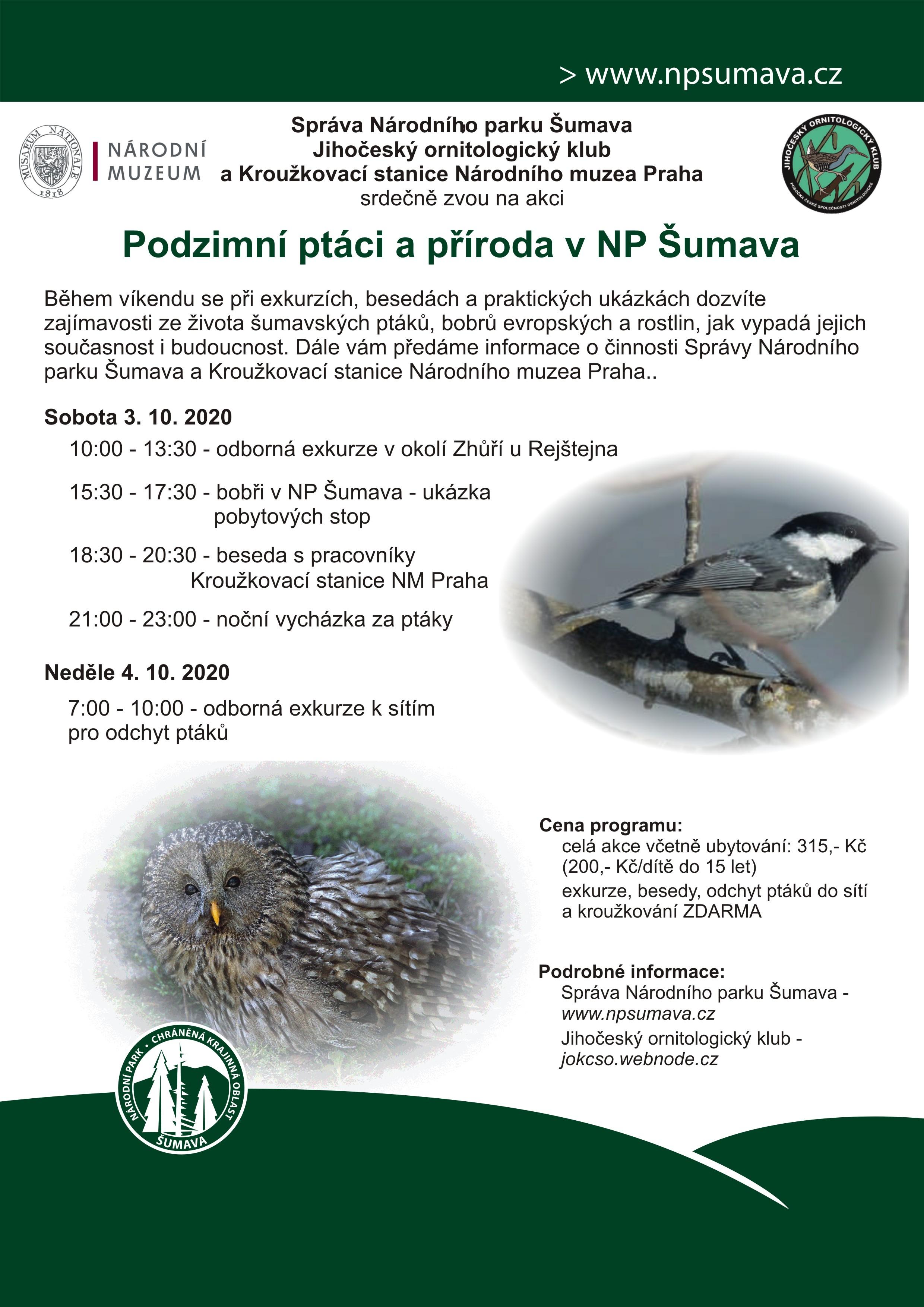 Podzimní ptáci a příroda v NP Šumava