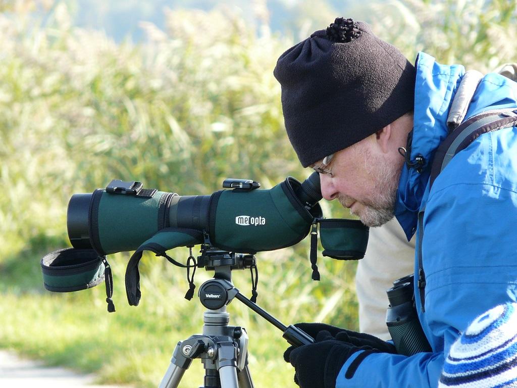 Malé ornitologické exkurze pro členy MOS, ČSO i pro veřejnost