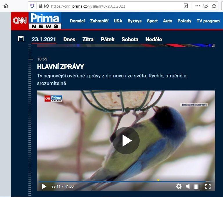 21-01-23 CNN Prima Melanismus 10m